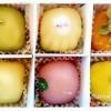 手土産に高確率で喜ばれる和菓子