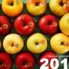 2015の年明けもりんご三昧!