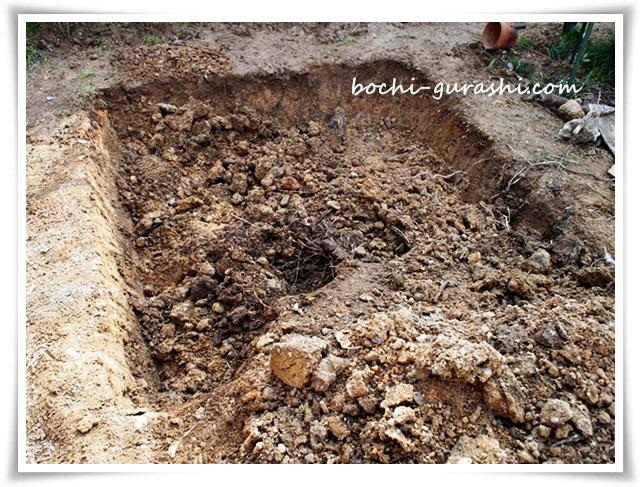 菜園スペース穴を掘る1