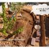庭DIY《半円レンガ花壇編》レンガを並べる下準備