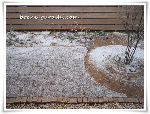 庭に雪が積もる