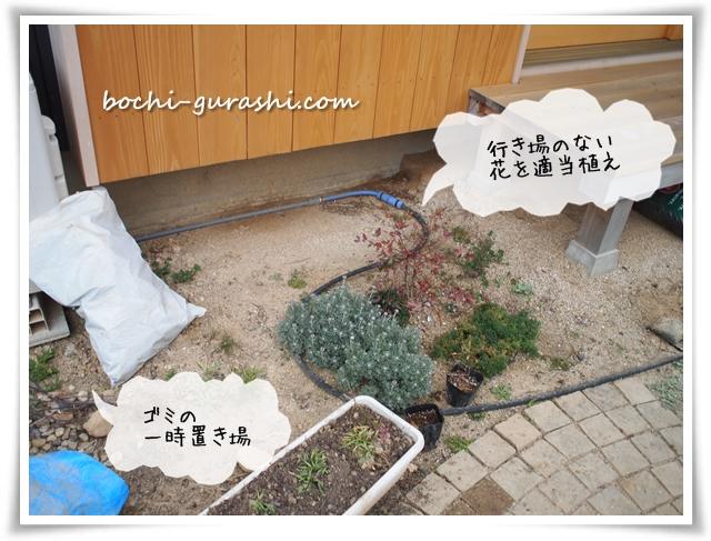 乾燥気味花壇
