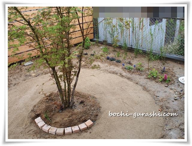 レンガサークルDIYと植栽始め