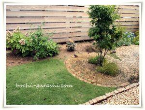 庭のヒヨドリ