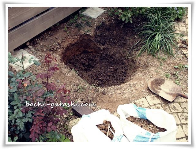ツルバラを植える穴