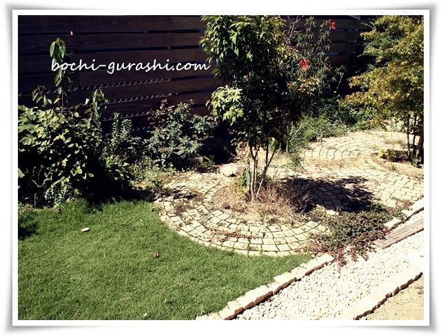夏に雑草が伸びた庭