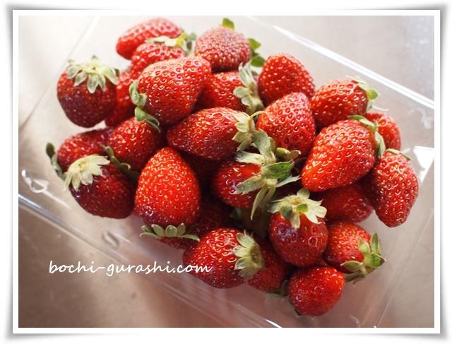 苺パック250円