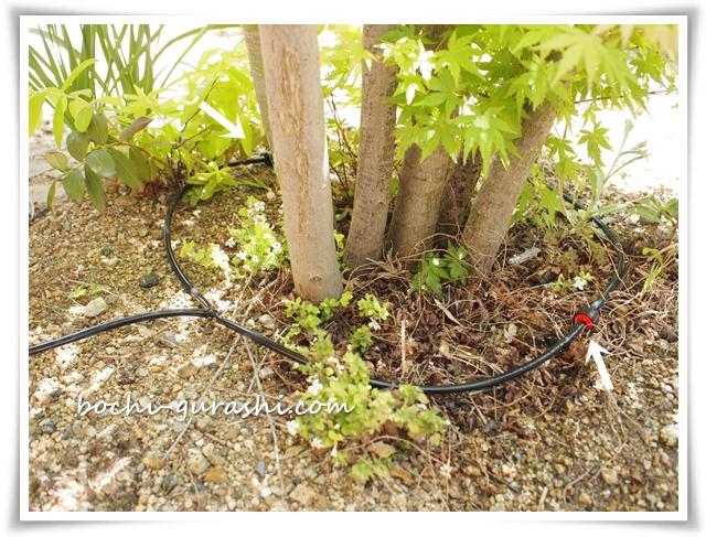 庭の自動水やり計画