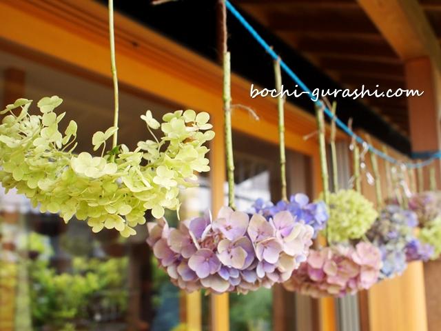 軒下に吊るした紫陽花