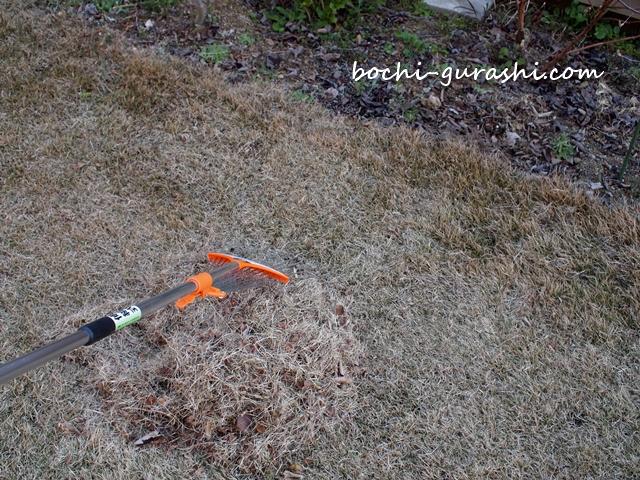 芝をレーキでサッチング