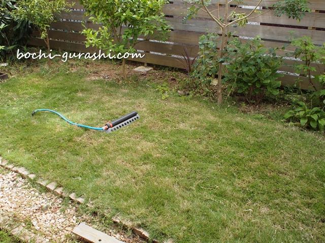9月の芝刈り完了