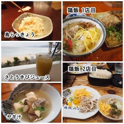 2018奄美大島料理