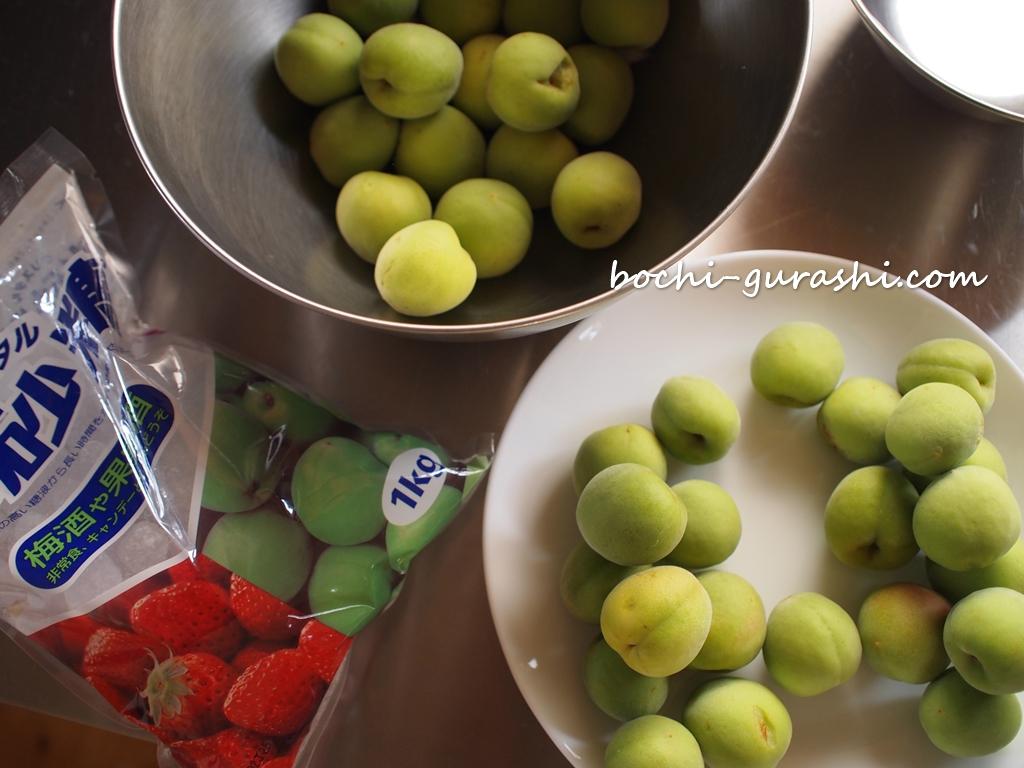 梅の実購入