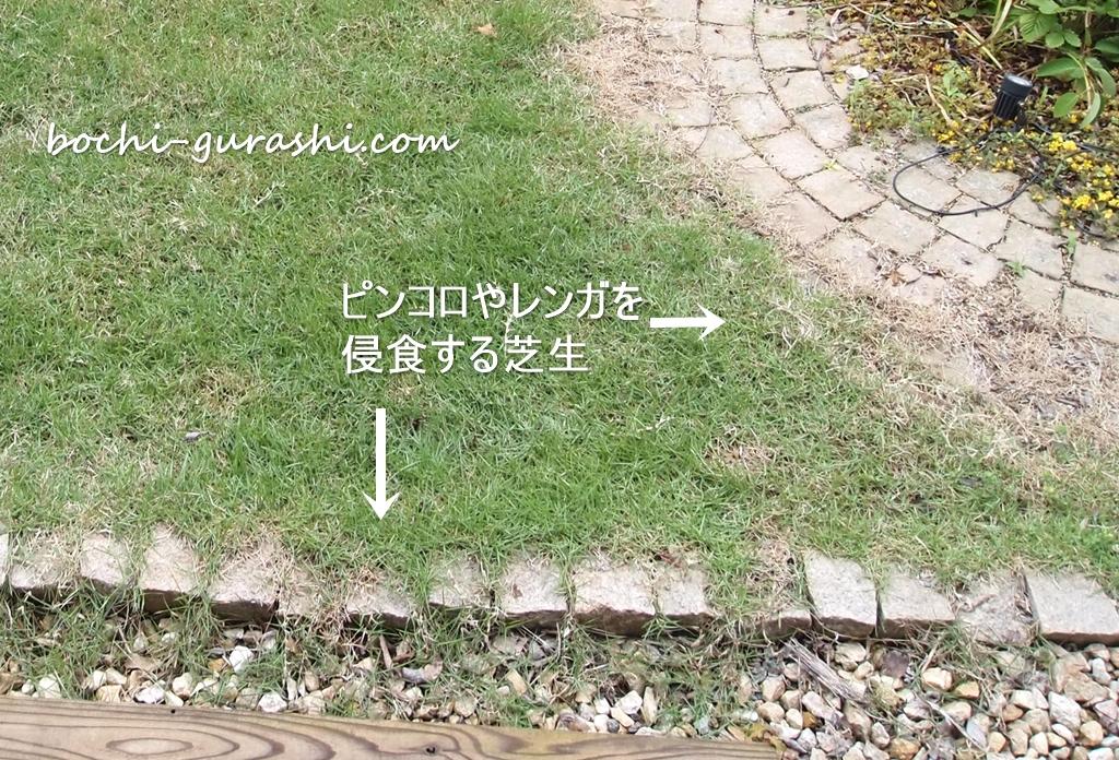 侵食する芝生
