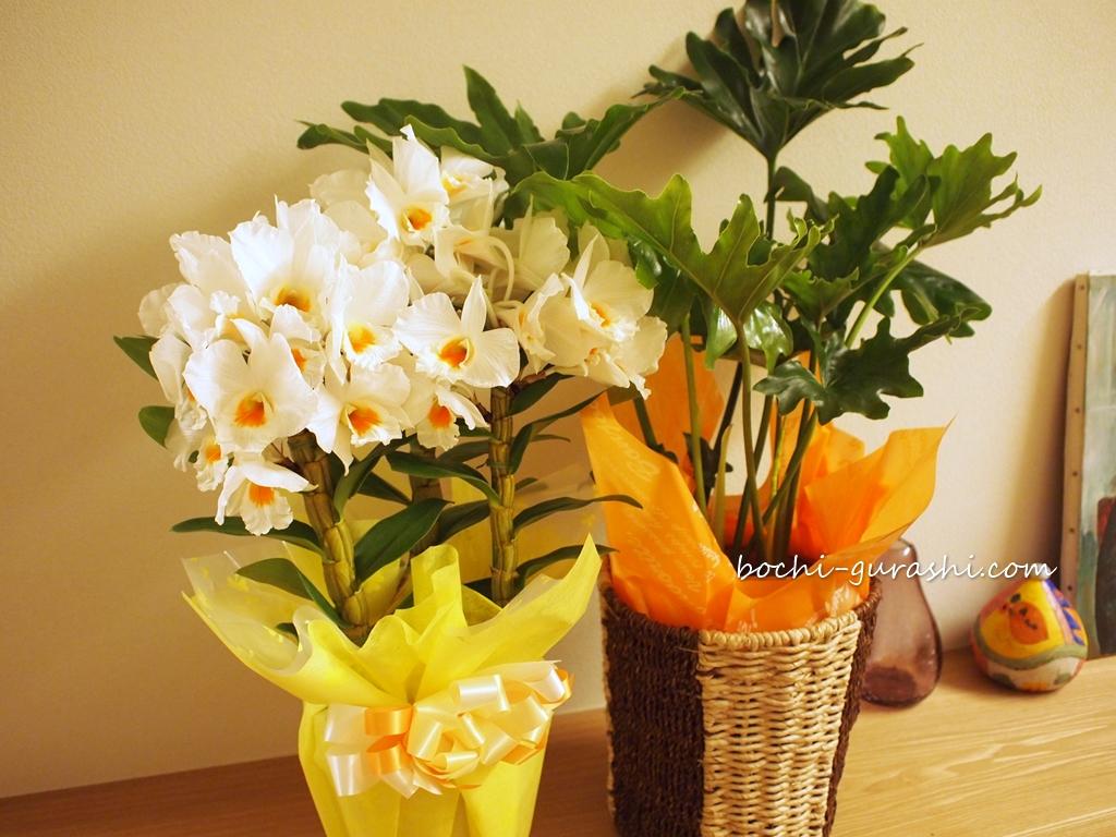 誕生日に花